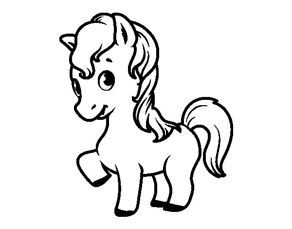 A baby foal coloring page
