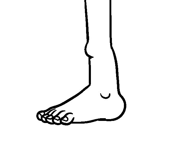 Ankle coloring page