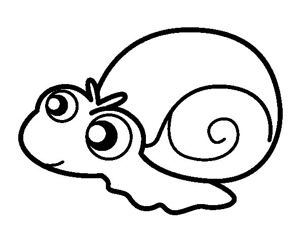Baby snail coloring page Coloringcrewcom