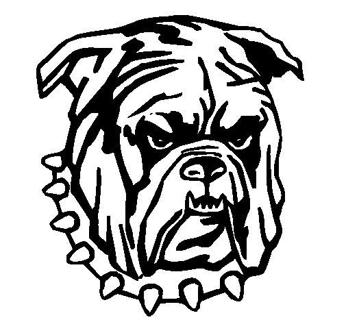 Bulldog coloring page  Coloringcrewcom