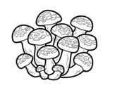 Bunashimeji mushroom coloring page