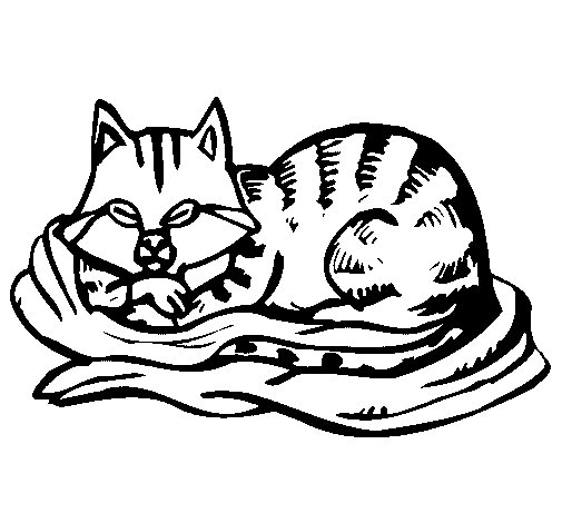 Cat In Bed Coloring Page