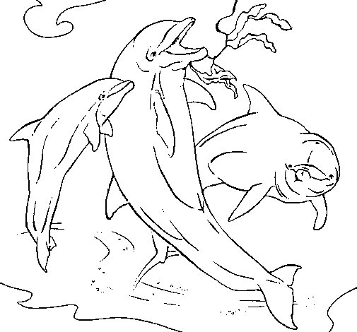 Dolphins playing coloring page
