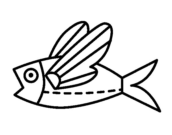 Flying Fish Coloring Coloring Pages Flying Fish Coloring Page
