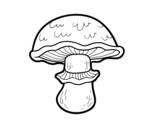 Portobello mushroom coloring page
