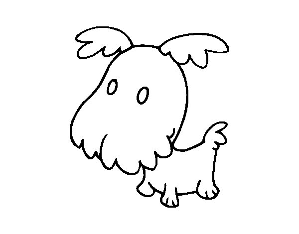Puppy Griffon coloring page