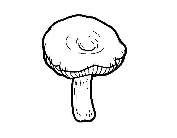 Russula mushroom coloring page