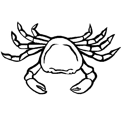 Sea crab coloring page