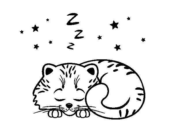 Coloring Pages Of Sleeping Animals : Sleeping kitten coloring page coloringcrew
