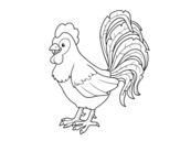 Te rooster farm coloring page