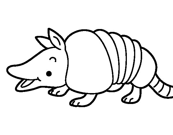 young armadillo coloring page