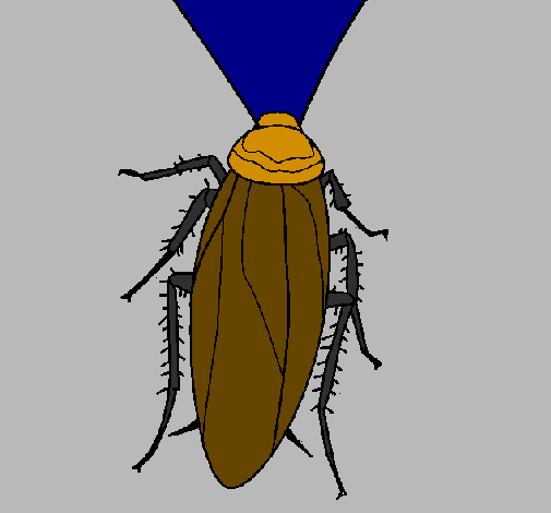 Coloring page Cockroach painted byangah