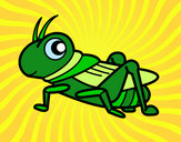 Coloring page Fun Grasshopper painted byKynKyn