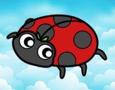 Happy ladybird