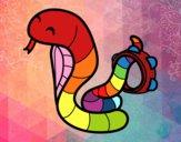 Cobra with tambourine