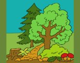Coloring page Forest painted byKArenLee
