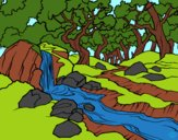 Coloring page Forest landscape with a river painted byYahYah
