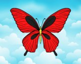 Coloring page Tropical butterfly painted byAnia