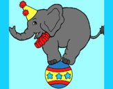 Coloring page Elephant balancing on a ball painted byAnia