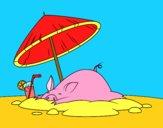 Piglet on the beach