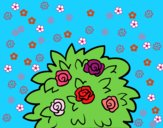 201737/dog-rose-nature-flowers-painted-by-sant-126145_163.jpg