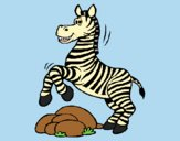 Coloring page Zebra jumping over rocks painted bylorna