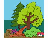 Coloring page Forest painted byPiaaa