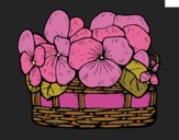 Coloring page Basket of flowers 12 painted byJena
