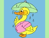 Coloring page Duck in the rain painted byLornaAnia