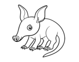 Aardvark coloring page