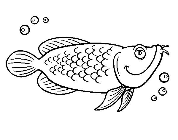 Atlantic Cod Coloring Page