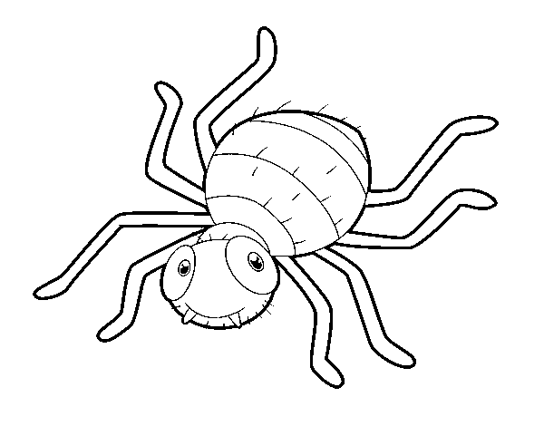 Childish spider coloring page