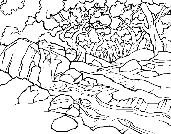 Forest landscape with a river coloring page