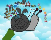 The snail