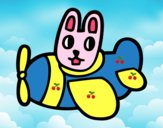 Rabbit in plane